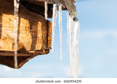 Icicles hang on the roof in the spring.