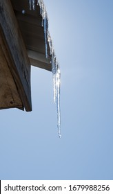 Icicles on the edge of a metal roof, melting, dripping with water, back lit by sun against blue sky