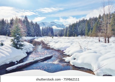 Iconic & beautiful winter scene with deep snow on ground in Cascade Mountains of WA state with a creek meandering through the snow, snow covered log in water, snowy evergreens & mountain background.