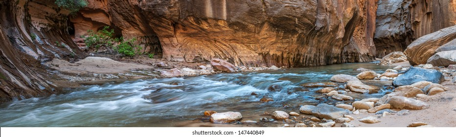 The iconic bend of the Virgin River in Zion National Park, UT. The Narrows is one of the best hikes in the world and offers incredible views.