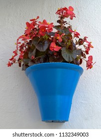 An iconic blue flower pot on the wall at Calleja de las Flores