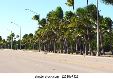 Iconic Highway A1A South runs through Kew West, Florida.