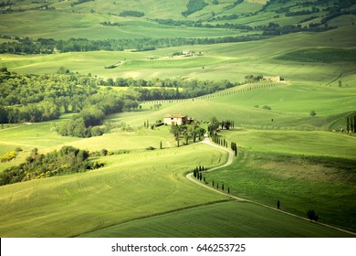 Iconic italian landscape, Pienza, Tuscany, Italy