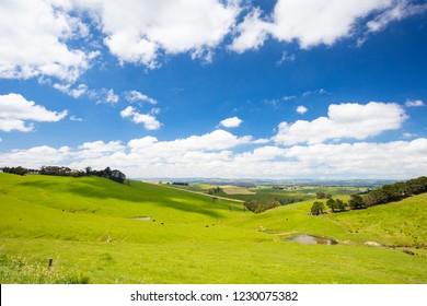 The iconic Strzelecki Ranges near the town of Koonwarra on the Bass Coast in Victoria, Australia