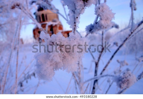Icy branches shot at dawn with an old orthodox church on the background, Charonda, Vologda region, Russia