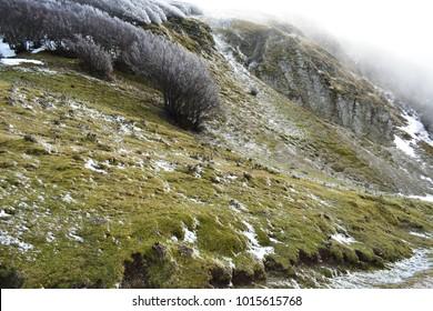 icy mountain in the winter season