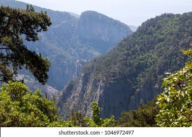 Ida Mountain-Kaz Daglari in Turkey. (in Turkish: Kazdagi, meaning Goose Mountain), Turkey. Beautiful nature..Ida Mountain has endemic plants and trees .