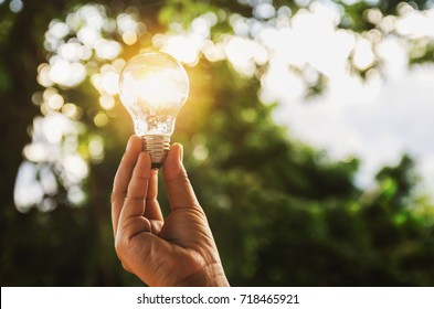 idea solar energy in nature, hand holding light bulb concept