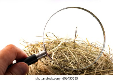 The idiom or the figure of speech look for a needle in a haystack is used to describe something elusive in a large space or a sisyphean task. Magnifying glass on the needle is isolated on white
