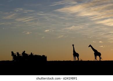 Idyllic african safari silhouette.