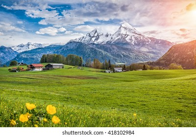 Idyllic alpine landscape with fresh green meadows, blooming flowers, typical farmhouses and snowcapped mountains in golden evening light at sunset, Nationalpark Berchtesgadener Land, Bavaria, Germany