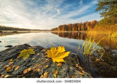 Idyllische Herbstseen-Landschaft mit Ahornblättern auf dem Felsen
