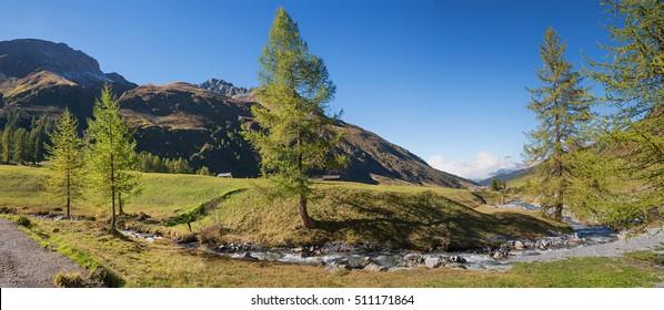 idyllic autumnal sertig valley with mountain creek and larch trees, swiss alps prattigau