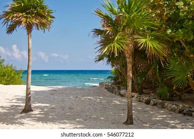 Idyllic beach and coast in the Mexican Caribbean sea, Quintana Roo, Mexico