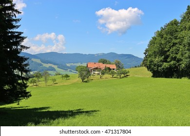 Idyllic countryside in Bavaria, Germany. The alps and a mountain pasture. Near Piding, Berchtesgadener Land.