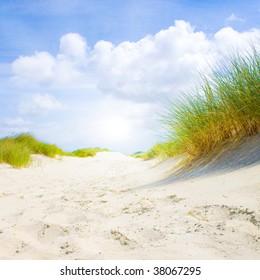Idyllic dunes with sunlight