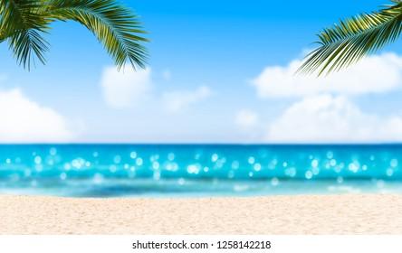 idyllic empty sand beach under palm leaves