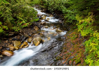 Idyllic flowing river water landscape in the temperate rain forest in Kaslo, British Columbia, Canada.