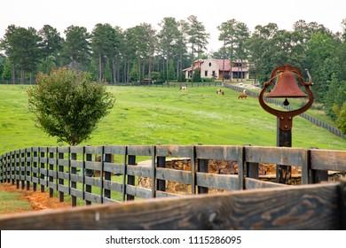 Idyllic horse ranch in Macon, Georgia.