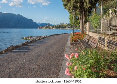 idyllic lakeside walkway malcesine with wooden benches and flowerbed, red begonias and roses