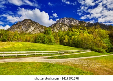 The Idyllic landscape in the Alps with fresh green meadows, blooming flowers, typical farmhouses and snowcapped mountain tops in the background, Nationalpark, Bavaria, Germany