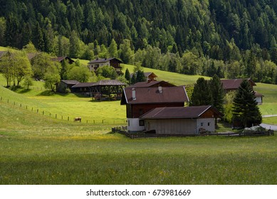 Idyllic landscape in the Alps in springtime with traditional mountain chalet and fresh green mountain pastures with blooming flowers on a beautiful sunny day. Austria, Europe
