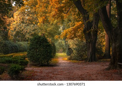Idyllic landscape of city park in autumn colors with yellow orange and red leaves.
