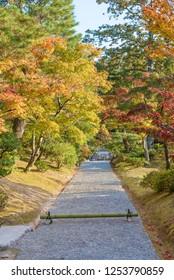 idyllic landscape in Katsura, Arashiyama, Kyoto, Japan in autumn season