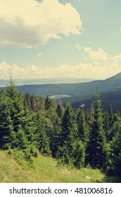 Idyllic landscape in the mountains on a sunny day; green fields and pines; nature. Image filtered in faded, nostalgic, retro, Instagram style. Black lake, Durmitor, Montenegro.
