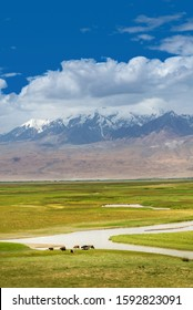 Idyllic landscape in the Pamirs Plateau with fresh green meadows on pasture and winding rivers and snow-capped mountain tops in the background in Xinjiang of China