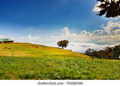 An idyllic landscape of a ranch in the hills of the Irazú volcano in Costa Rica, Central America.