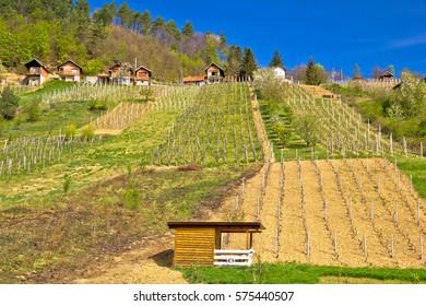 Idyllic mountain vineyards village of Prigorec near Ivanscica, Zagorje, Croatia