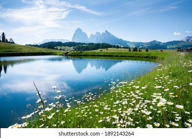 Idyllic panoramic view of scenic mountain landscape in the Alps with fields of blooming flowers and rugged mountain peaks reflecting in calm alpine lake on a sunny day with blue sky in springtime - Shutterstock ID 1892143264