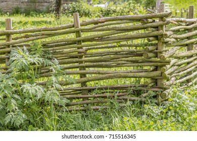 idyllic rural scenery with historic wooden fence in sunny ambiance