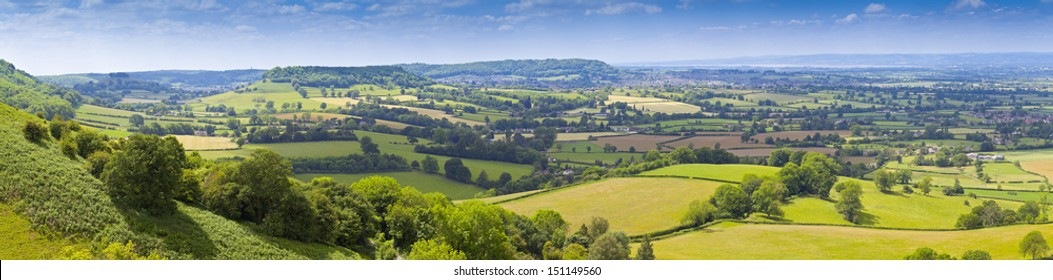 Idyllic rural view of pretty farmland and healthy livestock, in the beautiful surroundings of the Cotswolds, England, UK.