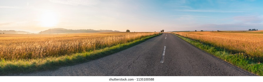 Idyllic rustic panorama with a street between golden agricultural fields, at sunrise, near Schwabisch Hall town,  Baden-Wurttemberg area, Germany.