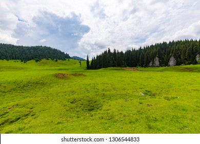Idyllic scenery in the mountains, in spring, with vibrant green vegetation