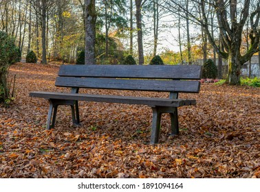 idyllic scenery with wooden bench at a cemetery at autumn time