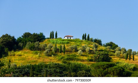 Idyllic and scenic countryside landscape - field, forest and hill - Tuscany, Italy; tourism, travel, vacation; background.