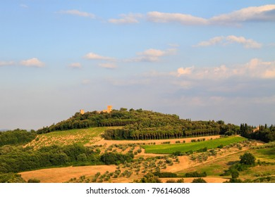 Idyllic and scenic countryside landscape - vineyard and old town on the top of the hill - Tuscany, Italy; tourism, travel, vacation; background.