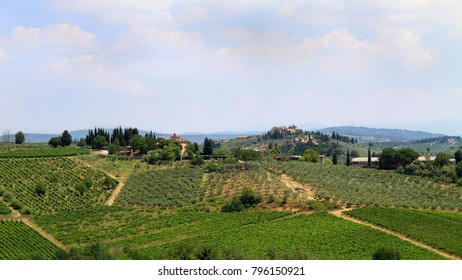 Idyllic and scenic countryside landscape - vineyards, orchards and old town on the top of the hill - Tuscany, Italy; tourism, travel, vacation; background.
