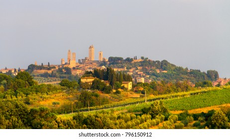 Idyllic and scenic landscape - vineyard and old town San Gimignano with fourteen towers on the top of the hill, Tuscany, Italy; tourism, travel, vacation; background.