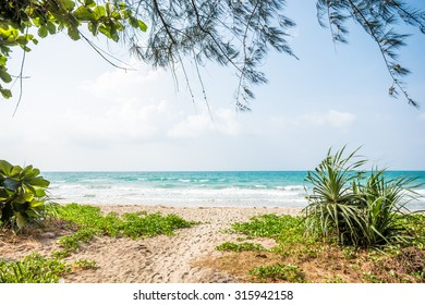 Idyllic seascape. Wonderful views of the sea, hiding from the sun under the shade of trees.