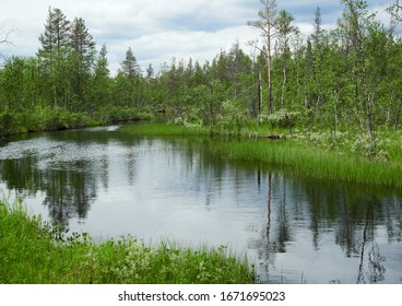 Idyllic summer landscape with clear water of a river in Ylläs, Finland.