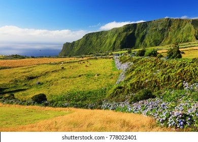 Idyllic summer landscape on the Island of Flores, Azores, Portugal, Europe