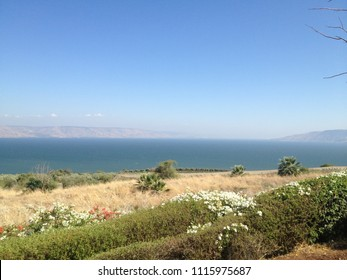Idyllic Summer view of Biblical Capernaum garden with Lake Tiberias and Golan in a blurred background