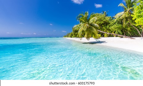 Idyllic tropical beach landscape for background or wallpaper. Design of tourism for summer vacation holiday destination concept. Maldives beach concept