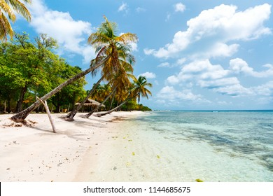 Idyllic tropical beach with white sand, palm trees and turquoise Caribbean sea water on Mustique island in St Vincent and the Grenadines
