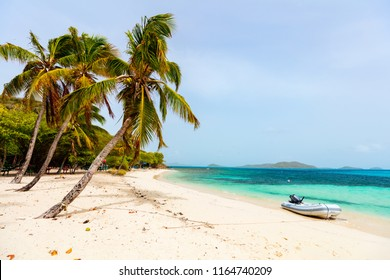 Idyllic tropical beach with white sand, palm trees and turquoise Caribbean sea water on exotic island at Tobago cays in St Vincent and the Grenadines