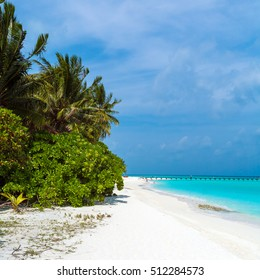 Idyllic tropical scene with beautiful green palm trees leaning over white sand beach, Maldives